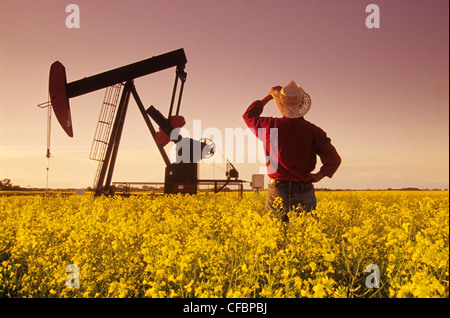 A farmer looks out over a blooming canola field with an oil pumpjack in the background near Carlyle, Saskatchewan, - Stock Photo