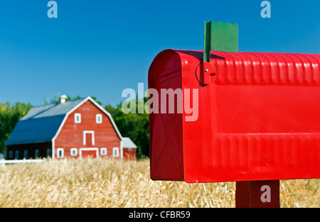 Close-up of rural mailbox with red barn and spring wheat field in the background, Grande Pointe, Manitoba, Canada - Stock Photo