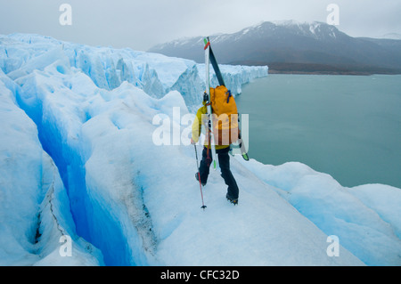 A daring skier walks across the toe of the Perito Moreno Glacier in Parque Nacional Los Glacieres, southern Patagonia, - Stock Photo