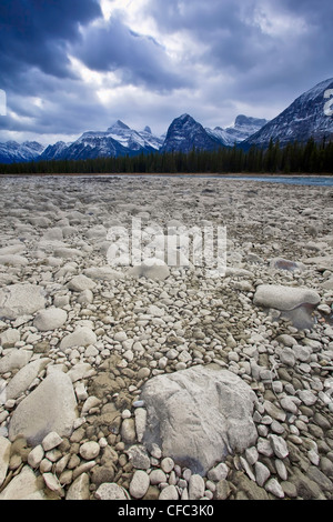 Dry rocky riverbed of the Athabasca River, Athabasca Range in background. Jasper National Park, Alberta, Canada. - Stock Photo