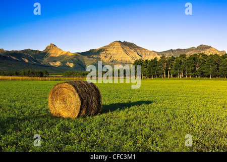 Single Bale of hay in field, mountains of Waterton Lakes National Park in background. Pincher Creek, Alberta, Canada. - Stock Photo