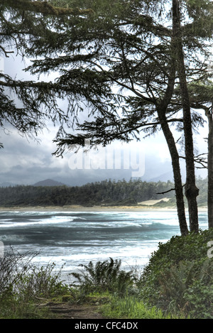 Long Beach Tofino waves framed by trees - Stock Photo