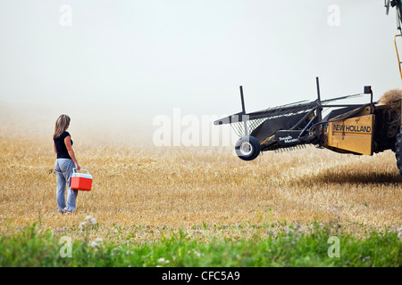 Woman delivering lunch cooler to a combine operator during the harvest. Near Somerset, Manitoba, Canada. - Stock Photo