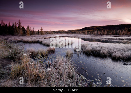 Pink skies first-light frosty Autumn morning - Stock Photo