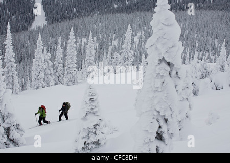 Two men ski touring in Roger's Pass, BC - Stock Photo