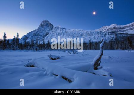 Mount Chephren illuminated moonlight cold winter - Stock Photo