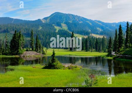 Alpine pond near Mt. Washington in Paradise Meadows in Strathcona Provincial Park, British Columbia, Canada - Stock Photo