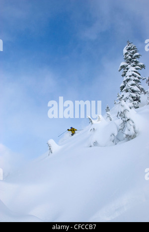 A mid adult man carving some deep turns in the Mt Baker backcountry Snoqualmie National Forest WA USA - Stock Photo