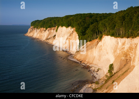 Chalk cliffs, Ruegen island, Jasmund National Park, Baltic Sea, Mecklenburg-West Pomerania, Germany - Stock Photo
