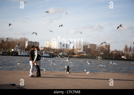 A loving couple standing on the river banks of the Schelde in Antwerp between the seagulls flying around them. - Stock Photo