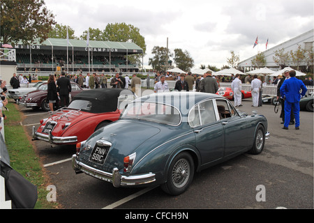 3.8 Jaguar MK2 and XK150 at Goodwood Revival 2011, Chichester, West Sussex, England, Great Britain, United Kingdom, - Stock Photo
