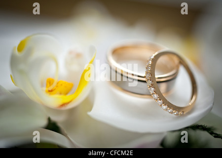 Wedding rings sitting on a white and yellow flower, very soft and beautiful - Stock Photo