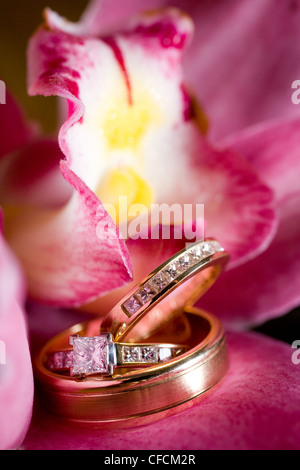 Wedding rings sitting on a beautiful pink flower, with yellow and white center - Stock Photo