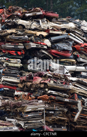 Stacks of obsolete cars in recycling yard, Vancouver Island, British Columbia, Canada - Stock Photo
