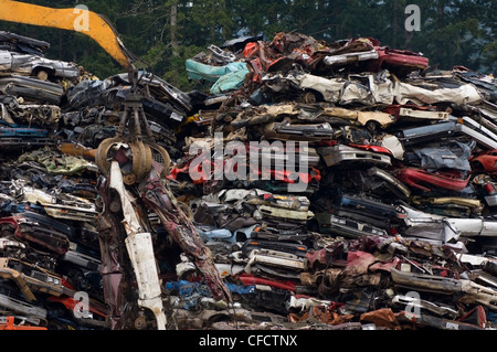 Crane lifting flattened cars out of stack of obsolete cars in recycling yard, Vancouver Island, British Columbia, - Stock Photo