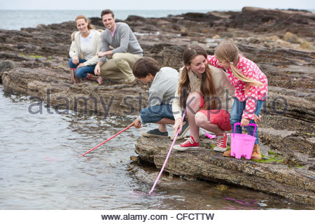 Family fishing on rocks with nets - Stock Photo