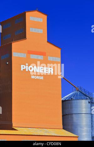 Grain Elevator against clear blue sky. Morse, Saskatchewan, Canada. - Stock Photo
