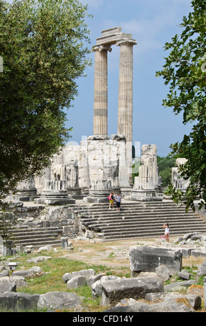 Didyma, an ancient Ionian sanctuary, in modern Didim, Turkey, containing the Temple of Apollo, the Didymaion. - Stock Photo