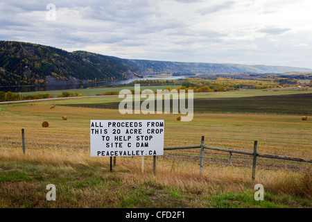 Sign protesting Site C dam proposed for the Peace River, along Highway 29 in the Peace Valley, British Columbia, - Stock Photo