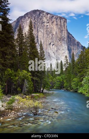 El Capitan, Yosemite National Park, Sierra Nevada, California, USA - Stock Photo