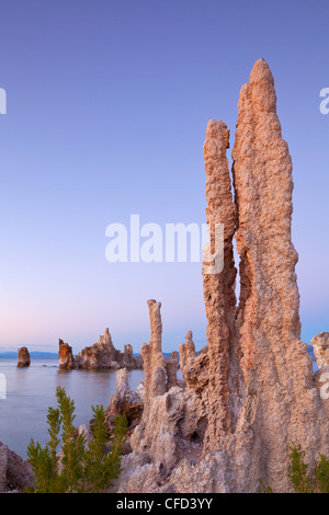Tufa spires and tower formations of calcium carbonate, Inyo National Forest Scenic Area, California, USA - Stock Photo