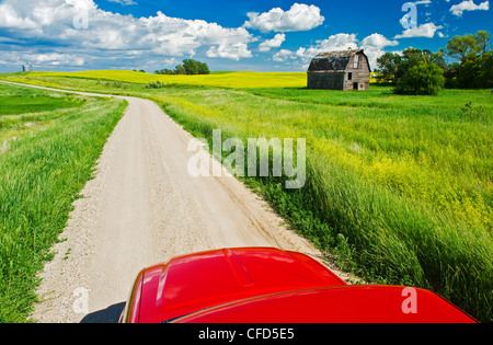 A truck on a country road with old barn and canola fields in the background, near Somerset, Manitoba, Canada - Stock Photo