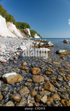 Chalk Cliffs, Kollicker Shore, Baltic Sea, Jasmund National Park, at Sassnitz, Island of Ruegen, Mecklenburg-Western - Stock Photo