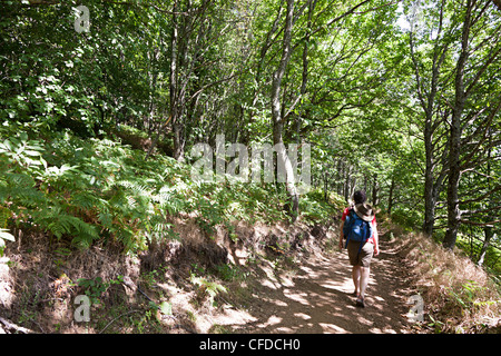 Woman backpacker walking on footpath through forest at Villelongue, Languedoc, France - Stock Photo