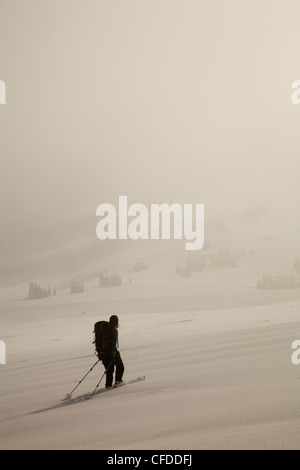 A silhouette of a female backcountry skier skinning along a track in fog. - Stock Photo