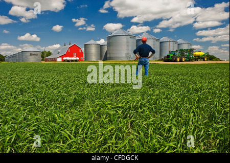 a man looks out over a farm with durum wheat field in the foreground, near Torquay Saskatchewan, Canada - Stock Photo