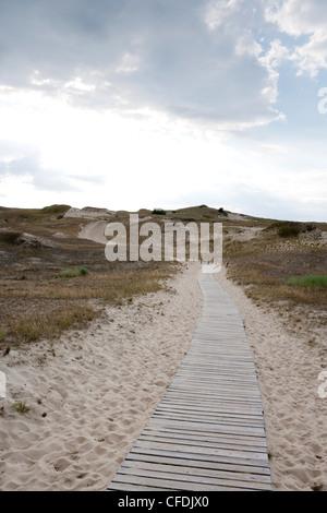 Wooden pathway across sand dune on Curonian Spit, near Klaipeda, Klaipedos, Lithuania - Stock Photo