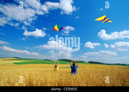 Children kite flying in wheat field, Tiger Hills, Manitoba, Canada - Stock Photo