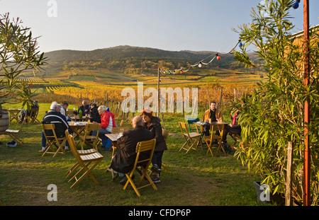 People at a Heuriger restaurant in autumn, Baden, Lower Austria, Austria, Europe - Stock Photo
