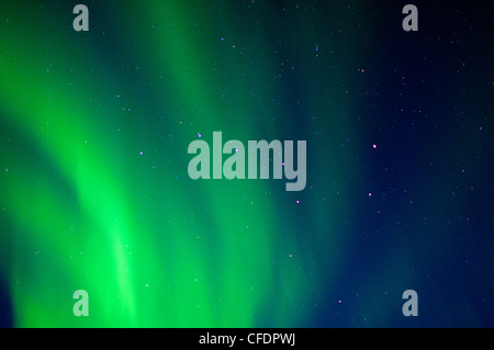 Big dipper and the aurora borealis (northern lights), Barrenlands, central Northwest Territories, Arctic Canada - Stock Photo