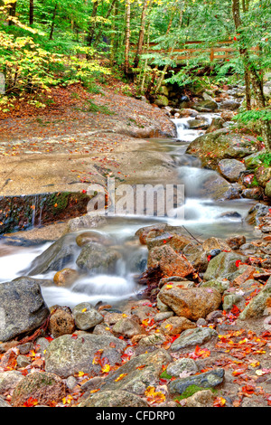 Swift River, The Flume, White Mountains, New Hampshire, United States of America - Stock Photo