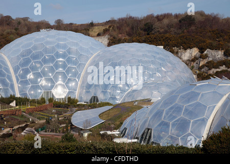 Biomes at Eden Project, St. Austell, Cornwall, England, United Kingdom, Europe - Stock Photo