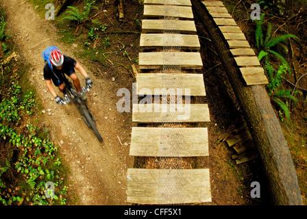 Man riding mountain bike on Sunshine Coast trails, British Columbia, Canada. - Stock Photo