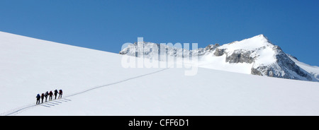 Ski mountaineers at ascent in the alps, South Tyrol, Italy, Europe - Stock Photo