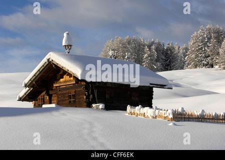 Snow covered alpine hut, Alpe di Siusi, Schlern, South Tyrol, Italy, Europe - Stock Photo
