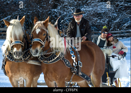 People in a horse drawn slay in snowy landscape, Alto Adige, South Tyrol, Italy, Europe - Stock Photo
