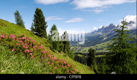 Italy, Dolomites, View of latemar mountains at sunset