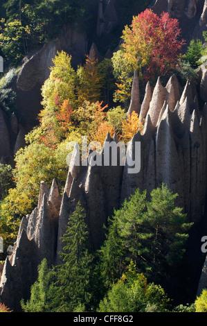 Earth pyramids amidst autumnal trees, Soprabolzano, Ritten, South Tyrol, Alto Adige, Italy, Europe - Stock Photo