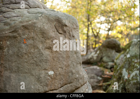 A climbing boulder in Fontainbleau with circuit number 29 painted on the stone in the dappled light of the sun - Stock Photo