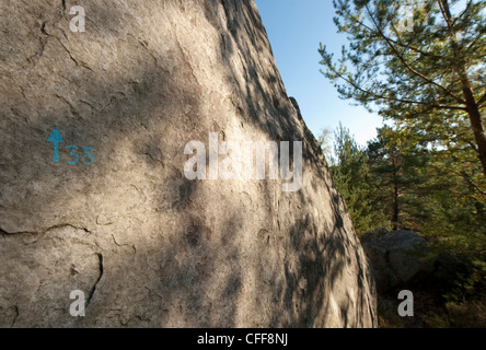 Dappled shadow of trees on a climbing boulder in Fontainbleau with a circuit number 35 painted on the rock. - Stock Photo