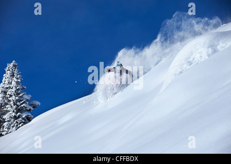 A athletic skier rips fresh deep powder turns in the backcountry on a sunny day in Colorado. - Stock Photo