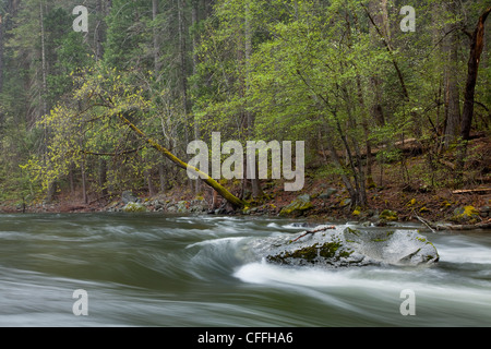 Scenic image of the Merced River flowing through Yosemite National Park, CA. - Stock Photo