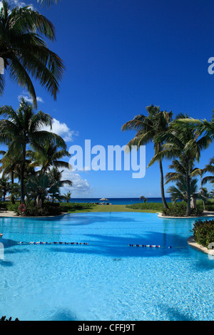 Tropical swimming Pool - Stock Photo