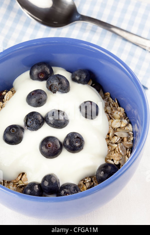 Muesli with yoghurt and blueberries - Stock Photo