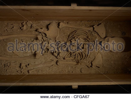 321874bdb52b8 Skeleton of a pregnant mother that had been holding a figurine of Alexander  the Great.