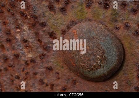 Farm gate - close detail of hinge section with rusting bolt head. [FOCUS POINT note in Description.] - Stock Photo